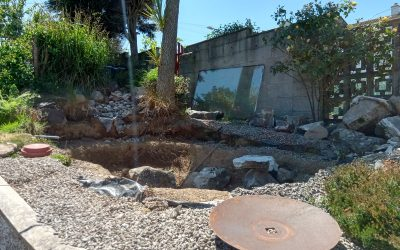 Pond to Fire Pit